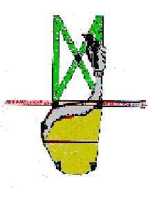 maliva2