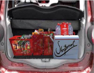 Shoppercart_2